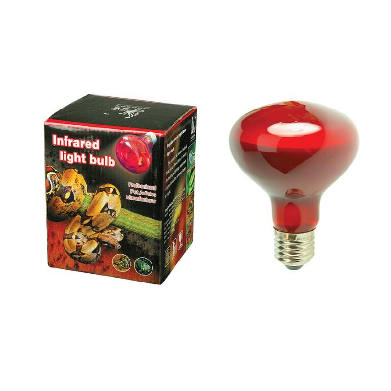 Lampada per rettili luce infrarossi family pet srl for Lampada per rettili tartarughe